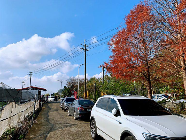 採草莓季節-來新竹採草莓-來來草莓園路邊停車