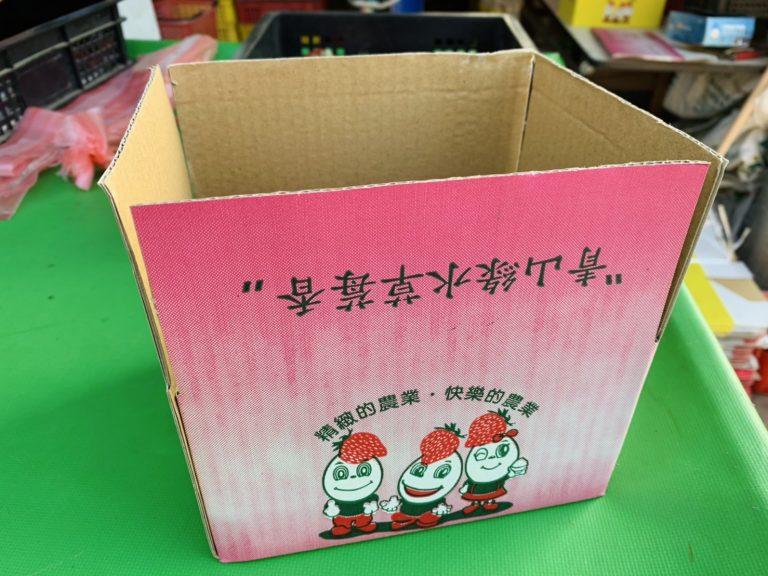 lailai strawberryfarm iklady08